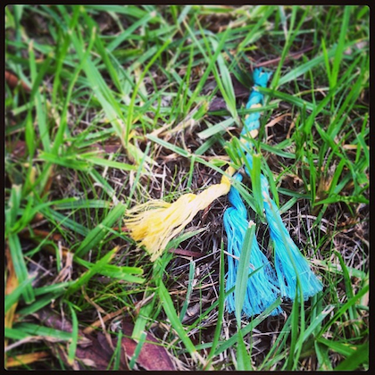 A rope in the grass